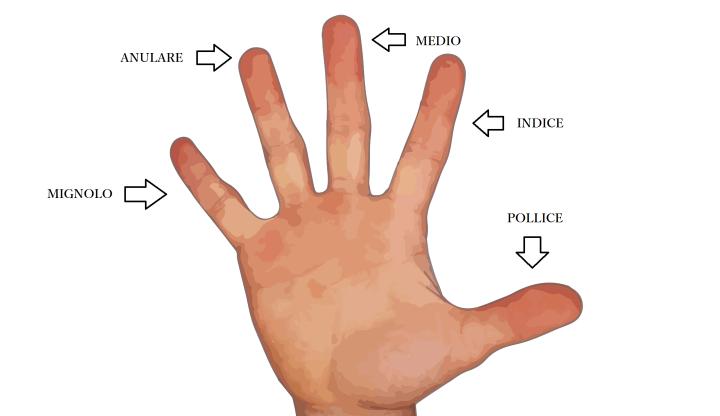 Los nombres de los dedos de la mano en italiano
